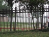 wrought iron fencing 015