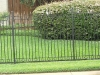 wrought iron fencing 020