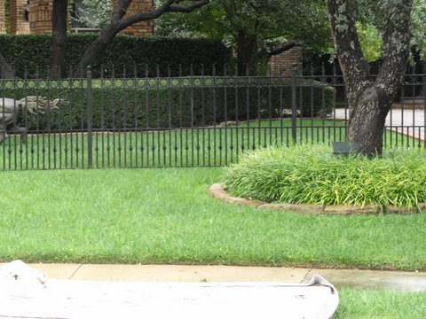 wrought iron fencing 018