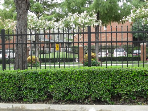 wrought iron fencing 029